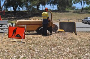 stump grinding large grinder 04