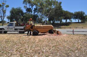 stump grinding large grinder 07